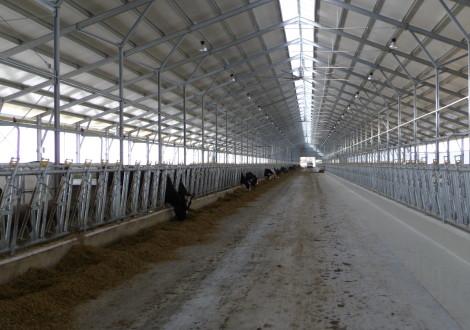 FABRINO High Grade Hochleistungsfaser Beton Landwirtschaft Milchvieh