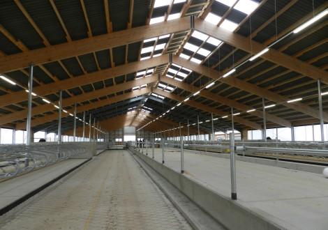 FABRINO High Grade Faser Schiebergang Betonbewehrung Milchmiehstall Landwirtschaft