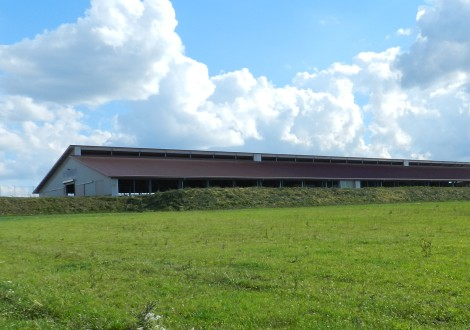 FABRINO High Grade Jungbullenstall Kunststofffaser mit Statik Landwirtschaft 1