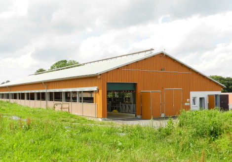 FABRINO High Grade Milchviehstall mit Kunststofffaser Futtertisch Liegeflächen Schiebergang 2