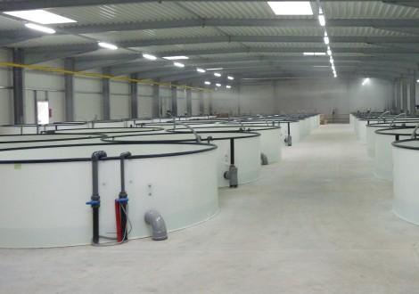 Industrieboden mit High Grade Faserbewehrung (2)